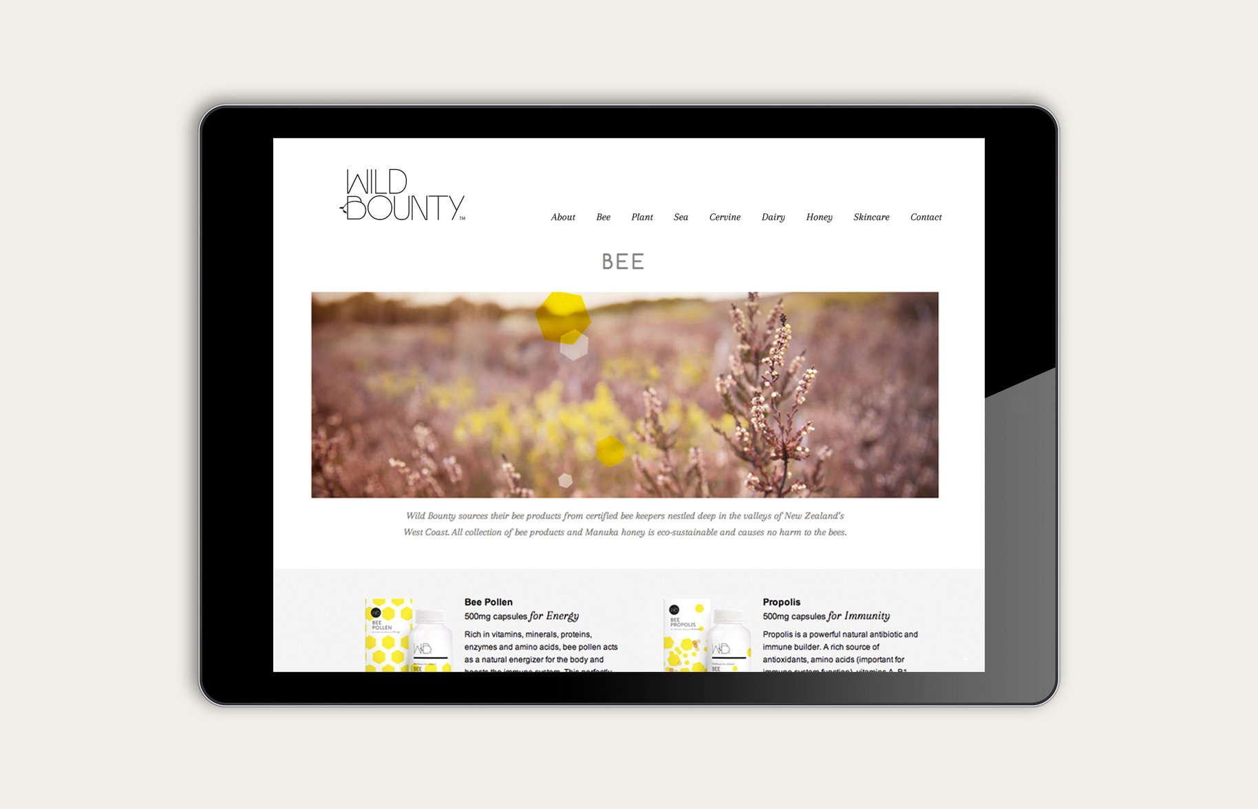 Wild Bounty iPad website product