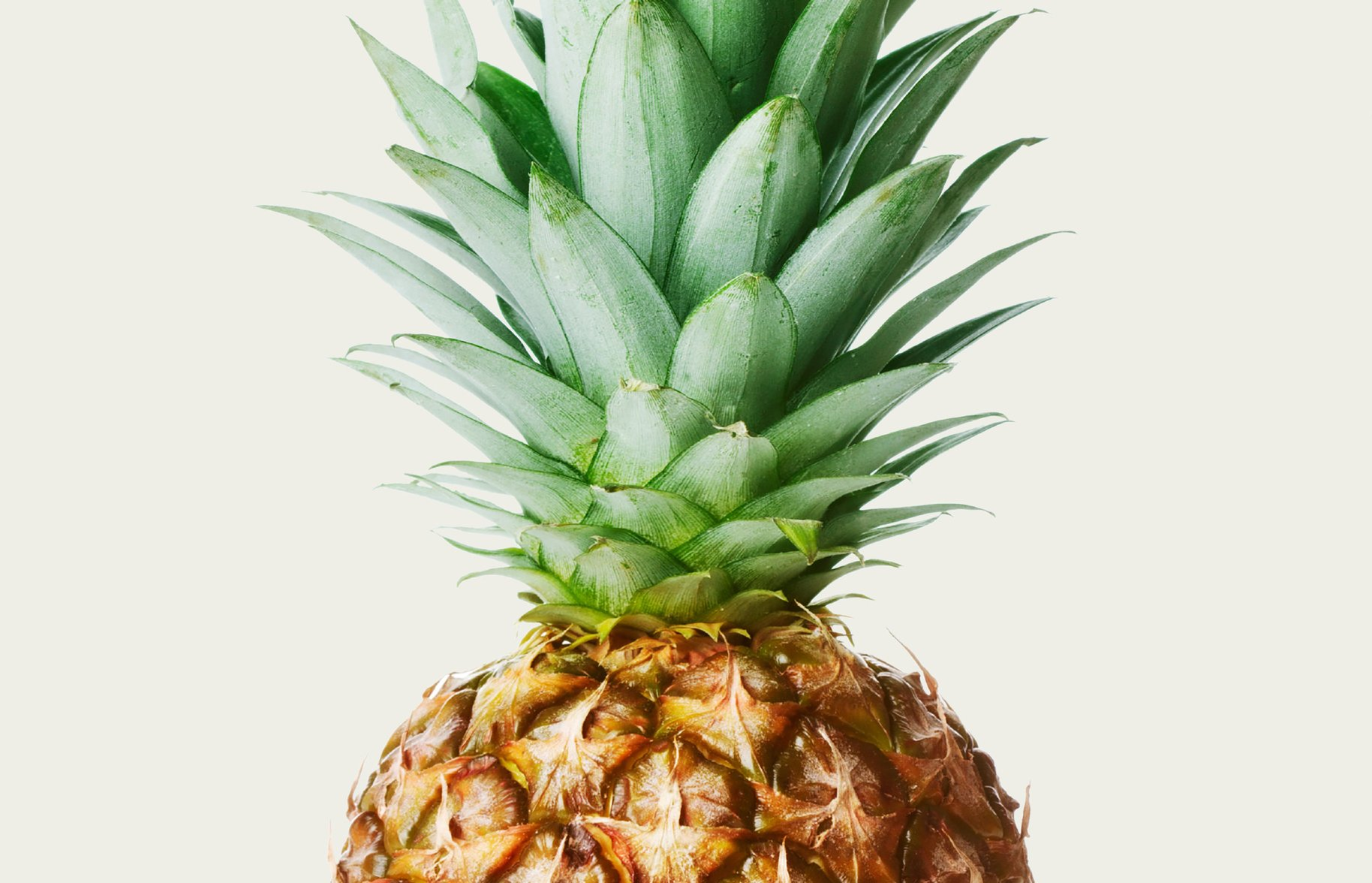 Dole Pineaple for Packaging Design